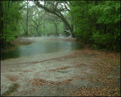 Photo of Suwannee Springs Flooding